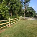 Split Rail - Locust Post